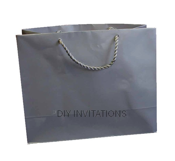 Horizontal Large Gift Bag (A4) - Silver