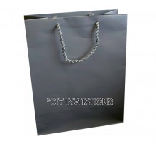 Large Gift Bag (A4) - Silver
